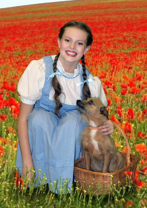 Dorothy down